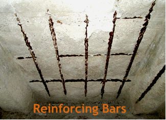 Bhate--Reinforcing Bars