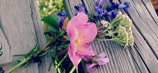just because wildflowers
